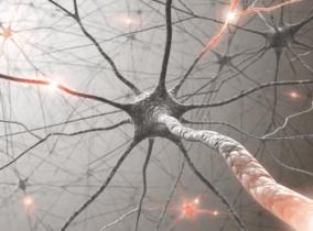 Прогностическое значение содержания в крови нейротрофического фактора мозга (BDNF) при терапии некоторых функциональных и органических заболеваний нервной системы с применением адаптола