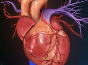 Сравнительная эффективность интервенционного и медикаментозного лечения пациентов с некоронарогенной желудочковой парасистолией